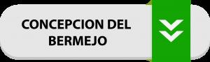 boton-concepcion-del-bermejo